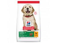 Hill's, SP, Puppy Large, корм д/щенков крупных пород (курица)