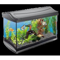 Tetra, AquaArt, LED Tropical, аквариумный комплекс (60 л.)