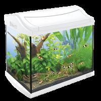 Tetra, AquaArt, Shrimps, Discover Line, аквариумный комплекс белый (20 л.)