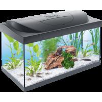 Tetra, Starter Line, LED, аквариумный комплекс (54 л.)