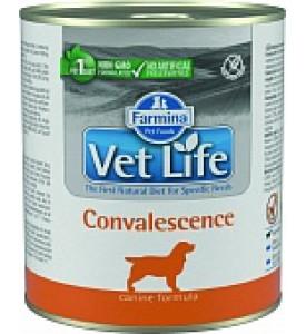 Farmina, Convalescence, влажный корм д/собак (восстановление)