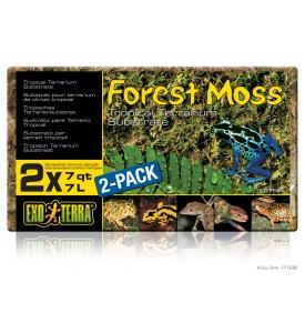 Hagen, Exo-Terra, Forest Moss, мох д/террариума